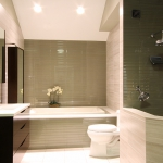 Main Floor Custom Bathroom