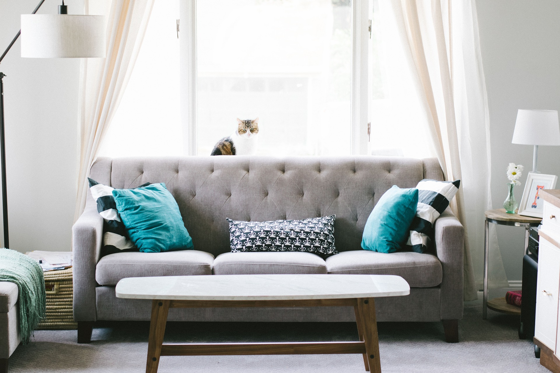 How to Incorporate Cozy Minimalist Design in Your Home Through Color