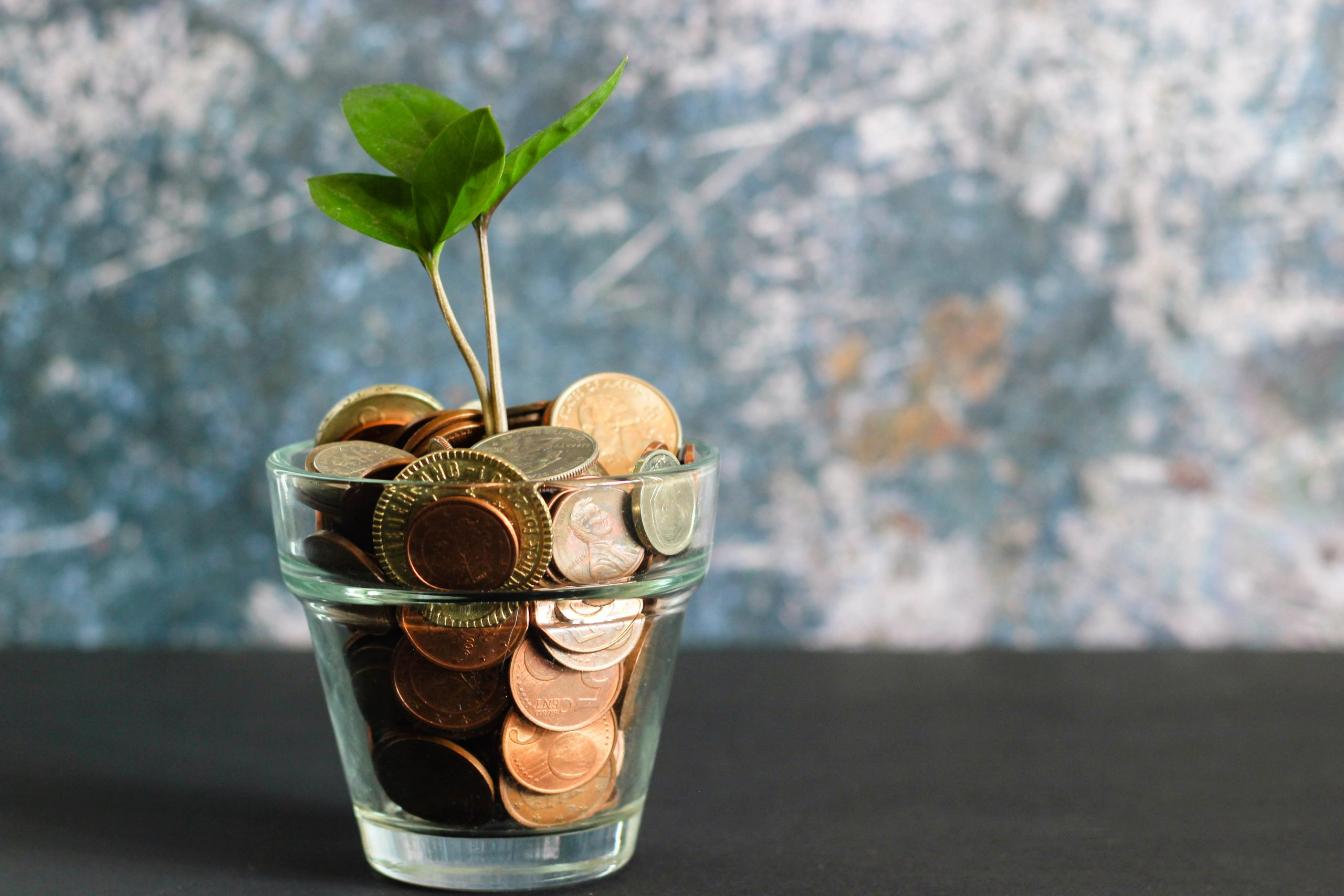 Going Green 5 Ways to Save Energy (and Money) at Home in 2020